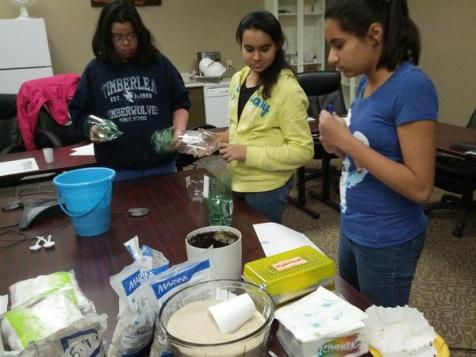 2012 girls inc environmental